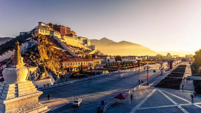 Comprar Online Té Verde Tibetano a granel